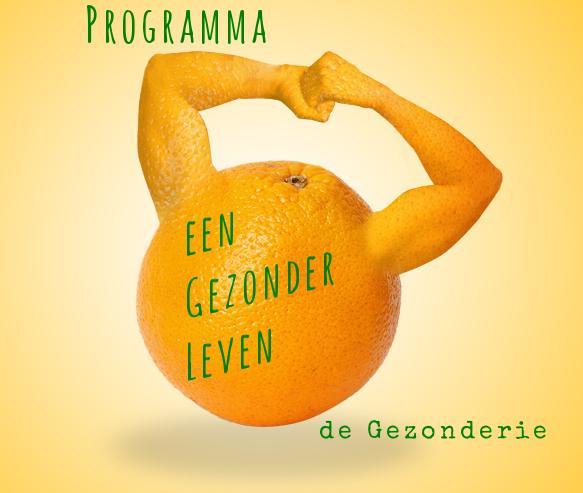 Programma-Gezonder-Leven